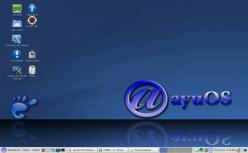 Resized_ayuos