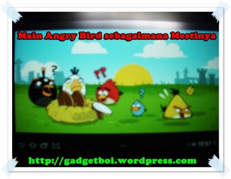 main angrybird dengan cara yang semestinya